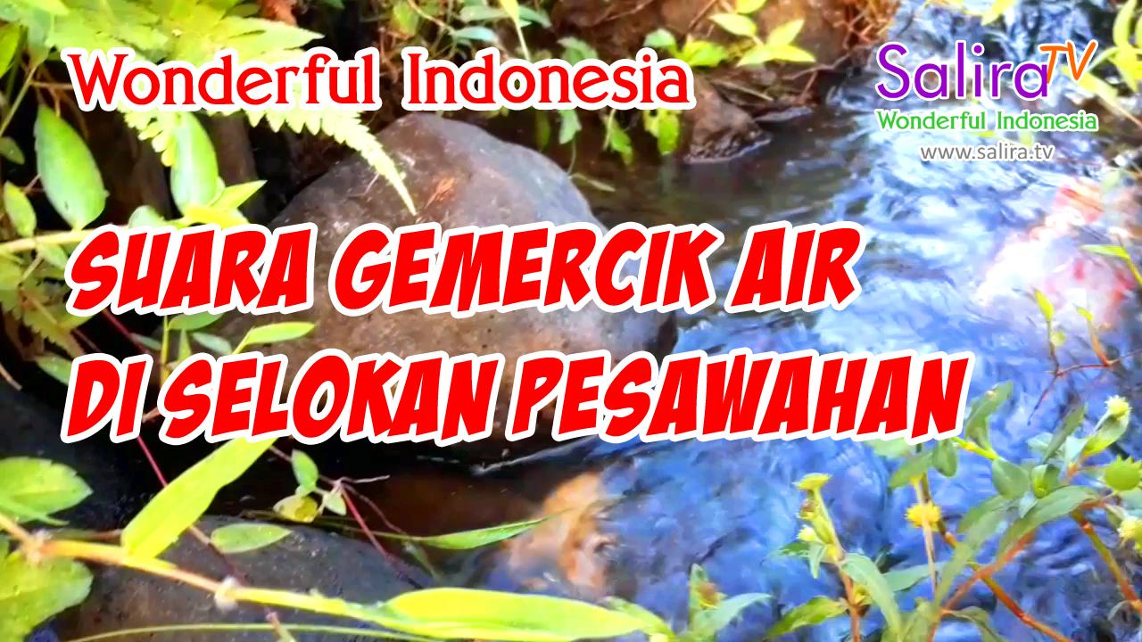 Suara Gemercik Air di Selokan Sawah Pedesaan Tasikmalaya Jawa Barat